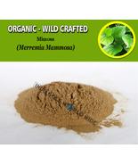 POWDER Strychnine Tree Poison Nut Semen Quaker Buttons Strychnos Nux-Vomica - $16.40+