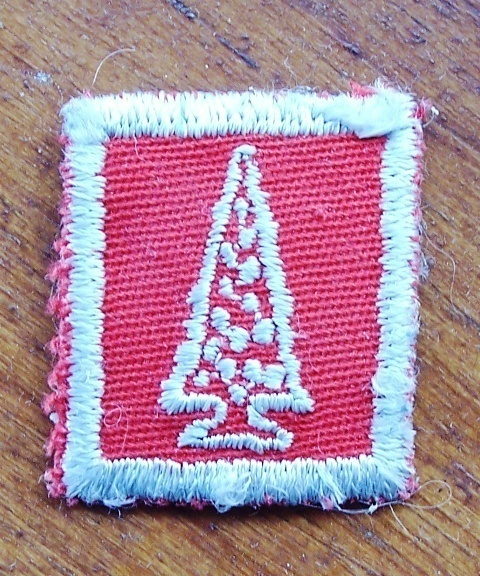 Primary image for  Old Red Tree Award Boy Scouts Girl Guides Patch