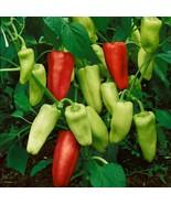 250 mg Pepperoncini Italian Sweet Pepper Seeds, Golden Greeks, friggitel... - $7.99