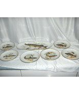 7 Pc Vintage Fish Tray & Plates Cheese Snack Bread Naaman Israel 1950's ... - $123.75
