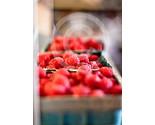 Berries copy thumb155 crop