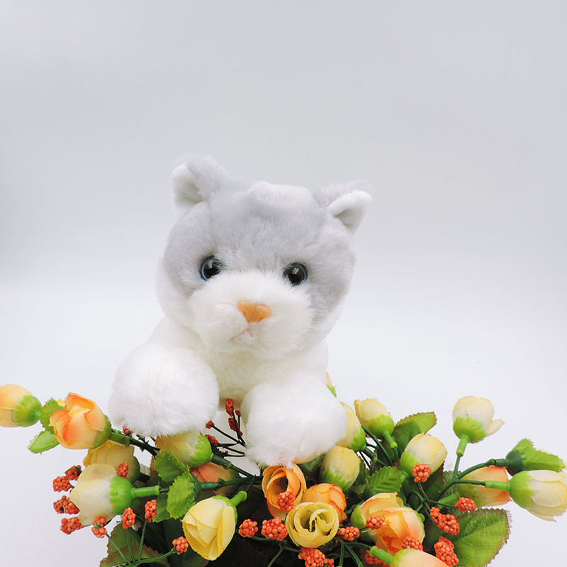 20CM Small White Cat Plush Toys Stuffed Simulation Animals Kawaii