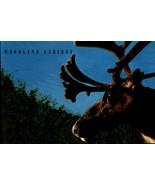 FDC POSTCARD-WOODLAND CARIBOU - ENDANGERED SPECIES-1996  ARTCARFT CACHET... - $2.94