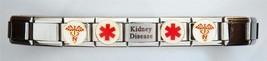 New Kidney Disease Medical Laser Alert Italian Shiny Charm Bracelet Free... - $19.99