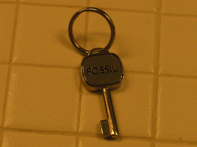Fossil Key Chain