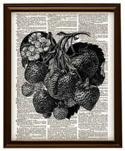 Strawberries on the Vine Vintage Dictionary Pag... - $12.00