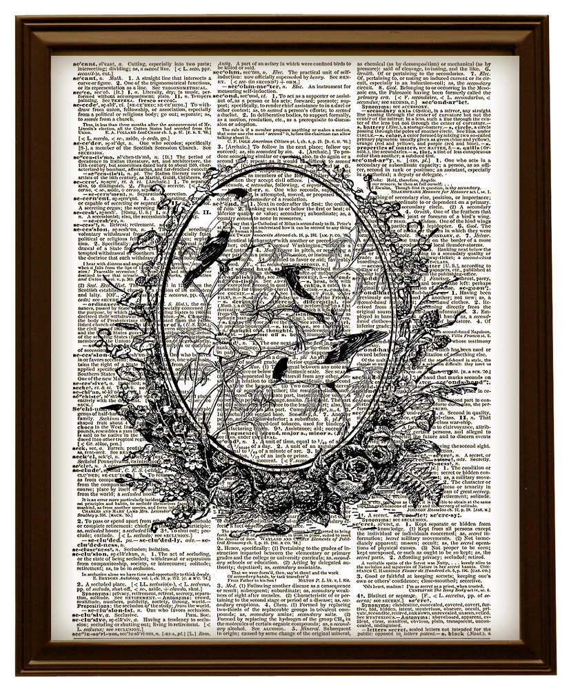 Pretty Birds in a Frame Animals Vintage Dictionary Art Print No. 0174