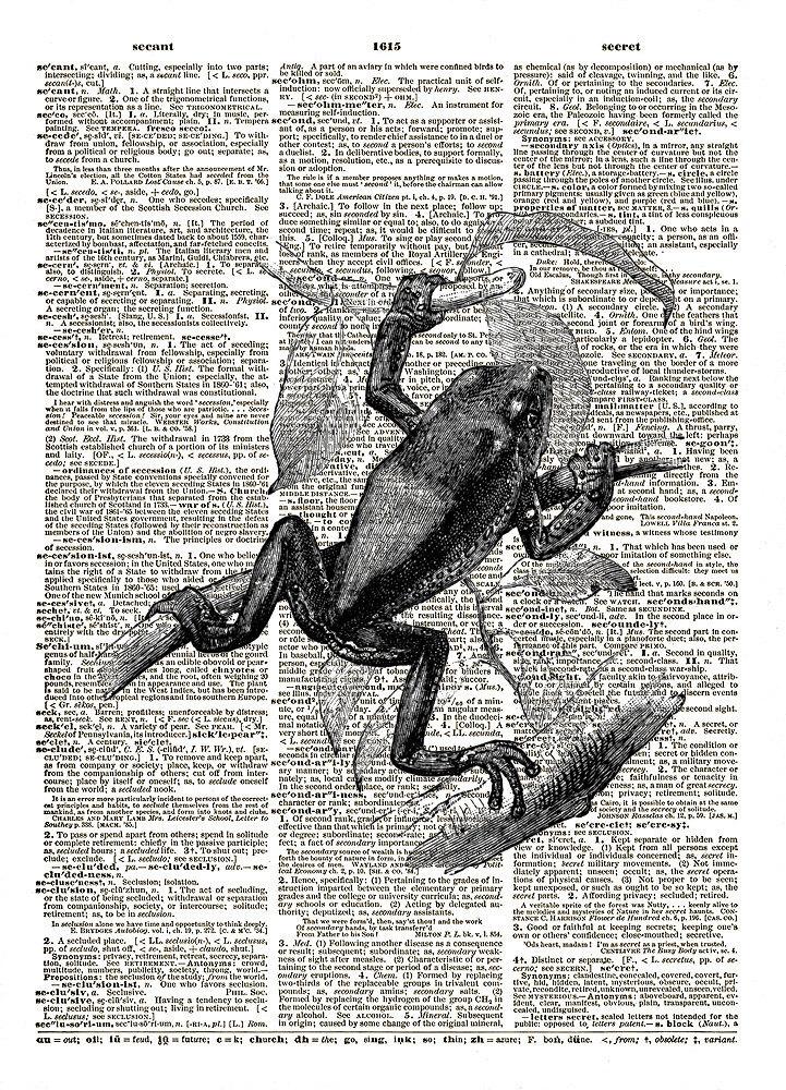 Tree Frog Amphibian Water Animal Vintage Dictionary Art Print No. 0173