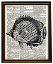 Butterfly Fish Ocean Animal Vintage Dictionary ... - $12.00