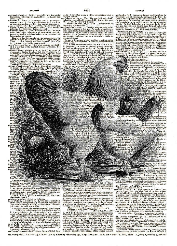 Two Chickens Farm Animals Birds Vintage Dictionary Page Art Print No. 0169