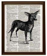 Cute Chihuahua Small Dog Animal Vintage Dictionary Art Print No. 0167 - $12.00
