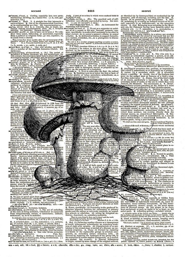 MUSHROOMS Fungi Food Vintage Dictionary Page Art Print No. 0127