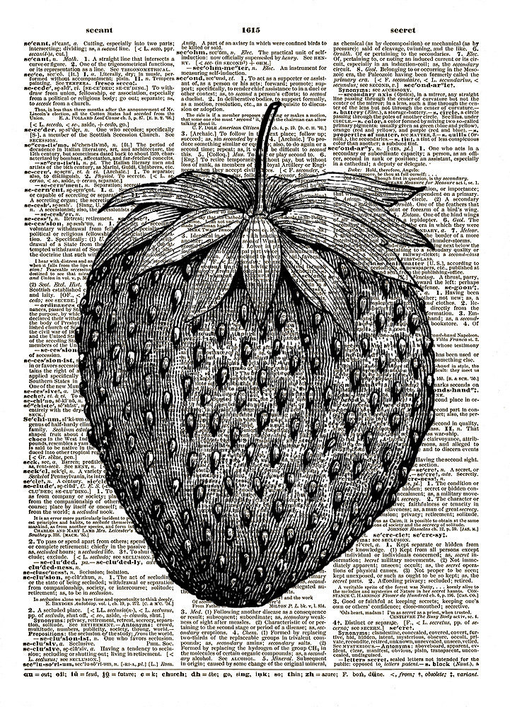 LARGE STRAWBERRY Berry Fruit Vintage Dictionary Art Print No. 0125