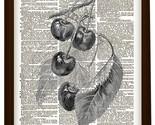 Il fullxfull.303278519 thumb155 crop