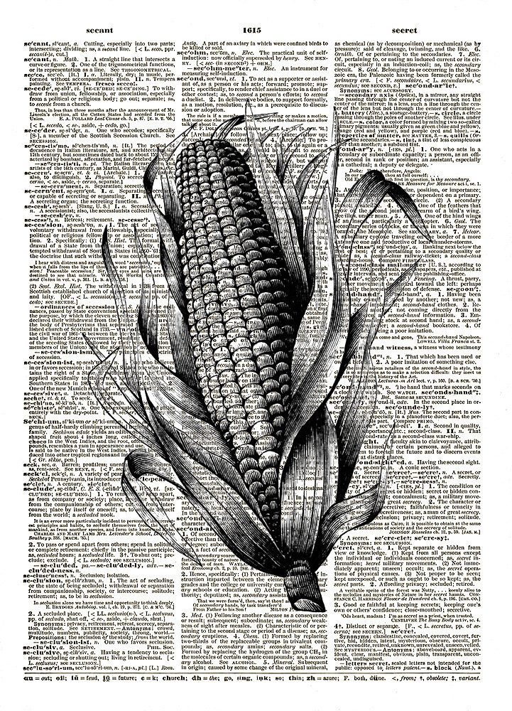 CORN on the COB in Husk Vintage Dictionary Page Art Print No.