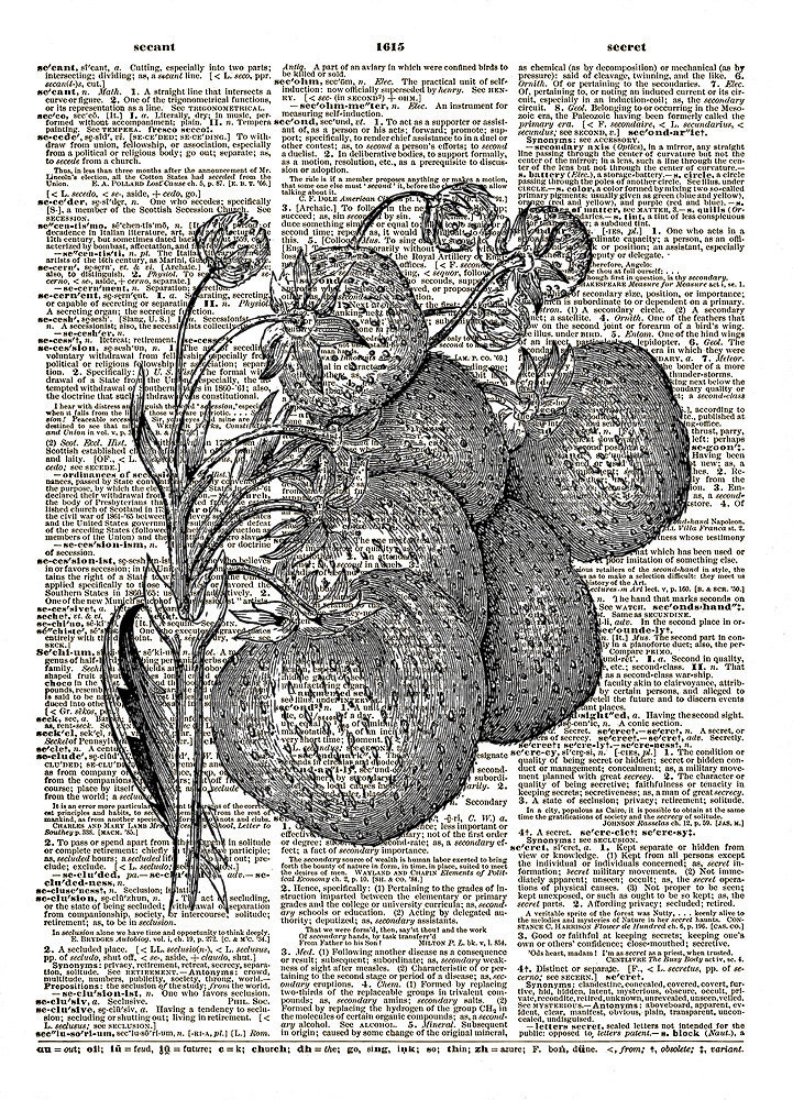 STRAWBERRIES on the Vine Vintage Dictionary Page Art Print No. 0122