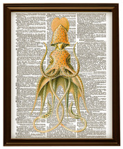 SQUID No. 3 Fanciful Color Antique Art Vintage Dictionary Art Print No. ... - $12.00