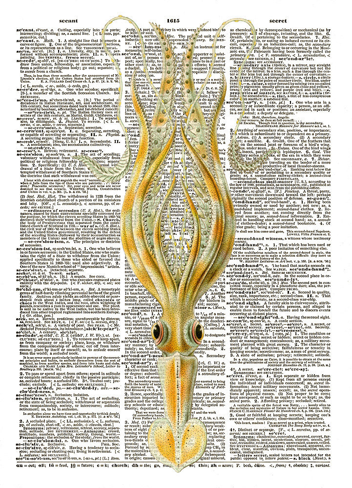 SQUID No. 2 Fanciful Color Antique Art Vintage Dictionary Art Print No. 0064