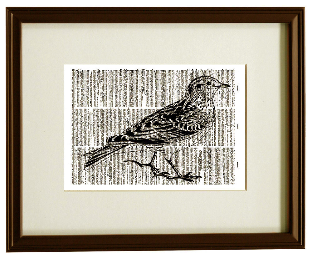 Lovely BIRD Flying Animal Vintage Dictionary Art Print No. 0048