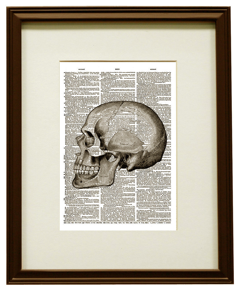 Profile View HUMAN SKULL Bone Anatomical Vintage Dictionary Art Print No. 0036