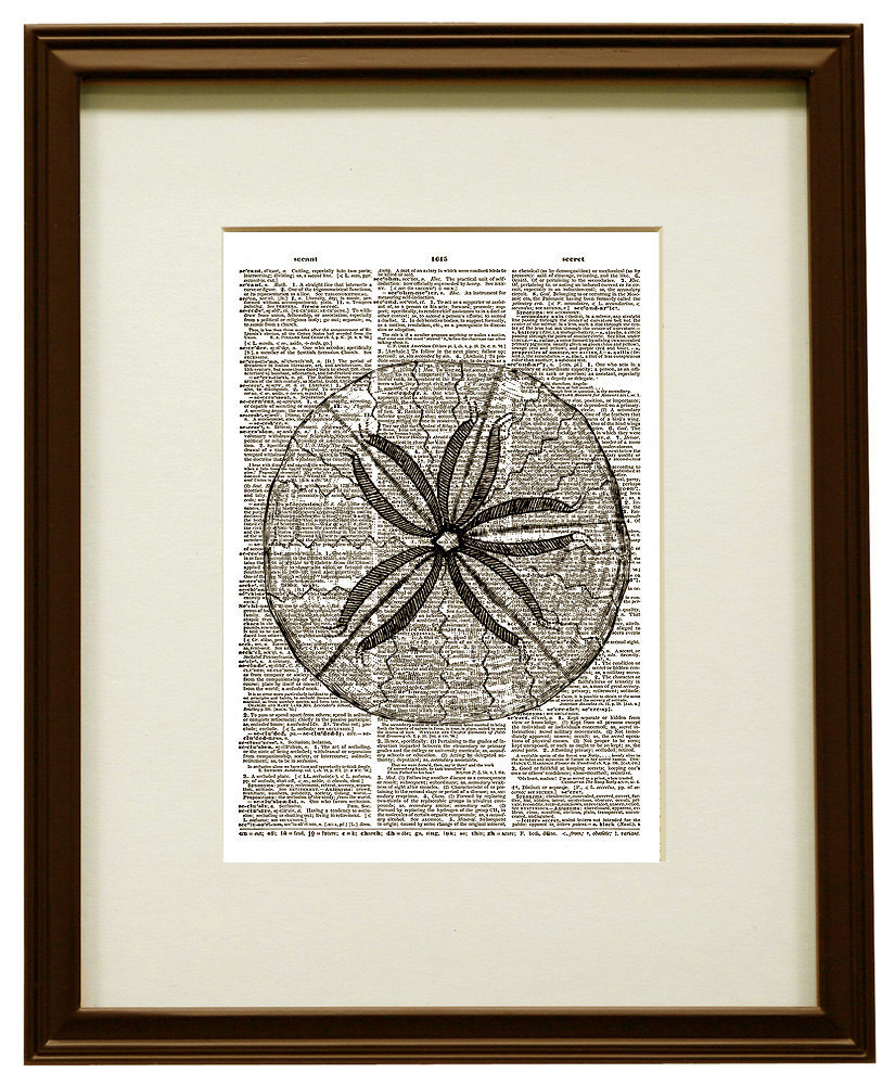 SAND DOLLAR Beach Shell Beautiful Upcycled Vintage Dictionary Art Print No. 0024