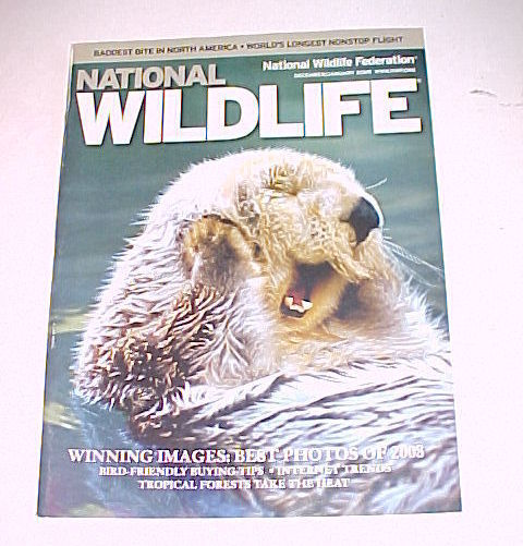 Primary image for NATIONAL WILDLIFE-DEC/JAN 2009(BEST PHOTOS 08);APRIL/MAY;JUNE/JULY;AUG/SEPT 2009