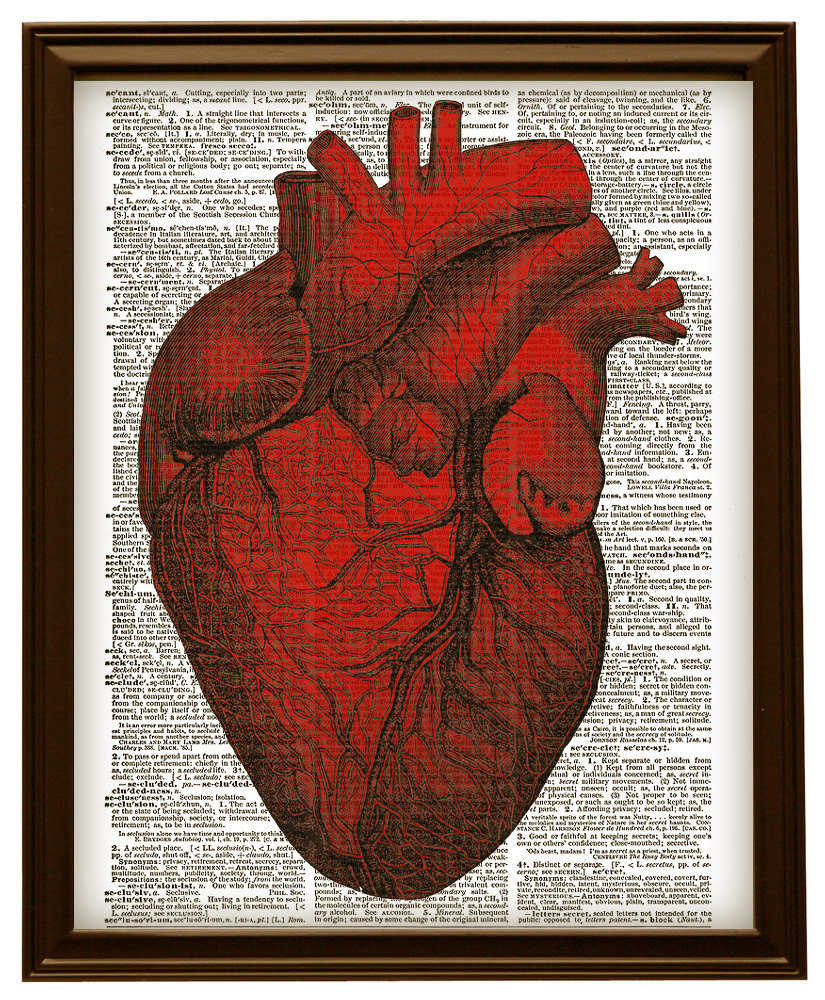 Red HUMAN HEART Anatomical Diagram Vintage and 25 similar items