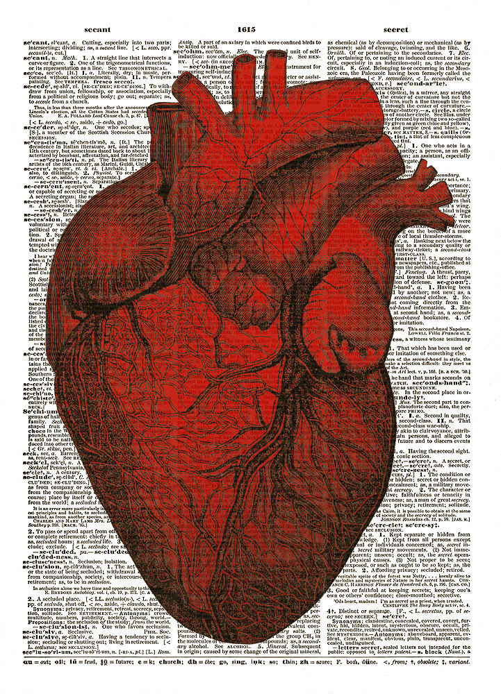 Red HUMAN HEART Anatomical Diagram Vintage Dictionary Art Print No. 0008
