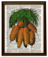 Color Bunch of CARROTS Beautiful Upcycled Vintage Dictionary Page Print ... - $12.00