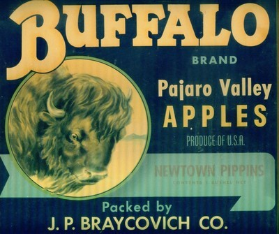 BUFFALO BRAND: Pajaro Valley Apple Crate Label Sign - FRAMED WITH GLASS