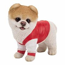 Pacific Giftware PT Short Hair Boo Dog with Gym wear Home Decorative Resin Figur - $24.74