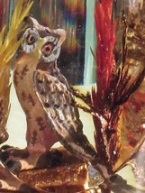 OWL in HABITAT ENCASED in Sloped ACRYLIC OVAL Made in Canada Vintage Lucite - $9.49