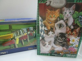2 Jigsaw Puzzles 750 Pieces Kittens & Rural Mailboxes (3) - $9.90