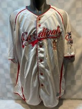 St Louis CARDINALS Baseball MLB Dynasty Jersey Size 2XL 50-52 - $24.74