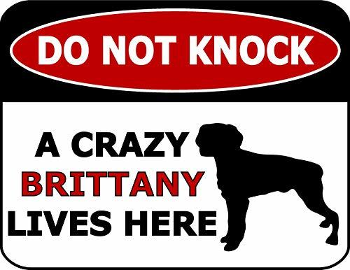 Primary image for Top Shelf Novelties Do Not Knock A Crazy Brittany Lives Here (Silhoutte) Laminat