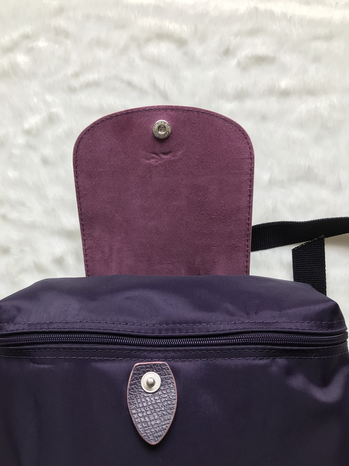 5e4208a632 France Md Longchamp Le Pliage Club Collection Horse Embroidery Backpack  Bilberry