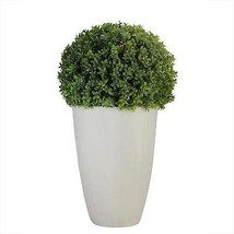 "Northlight 27"" Artificial Boxwood Plant in Decorative Stone Look Ceramic... - €82,10 EUR"