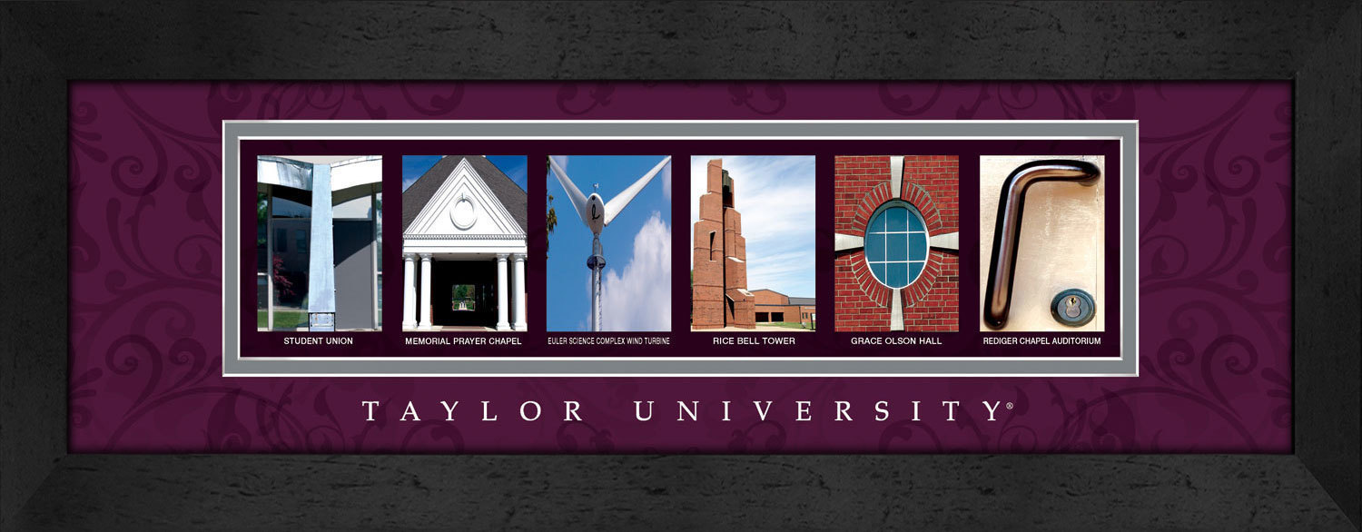 Primary image for Taylor University Officially Licensed Framed Campus Letter Art