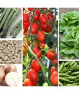 6 Variety Non GMO Heirloom Vegetable Seed Pack Emergency Survival Garden... - $18.96