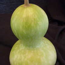 SHIP FROM US BIRDHOUSE BOTTLE GOURD SEEDS - 2 OZ SEEDS - NON-GMO, HEIRLO... - $67.84