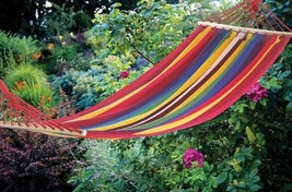 Bahama Single Person Hammock Red, Blue and Yellow Striped  - $34.60