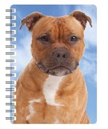 Staffordshire Bull Terrier (red) 3D Notebook - $5.23