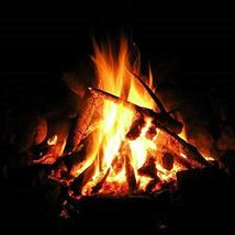 FIRESIDE FRAGRANCE OIL - 8 OZ - FOR CANDLE & SOAP MAKING BY VIRGINIA CAN... - $15.28