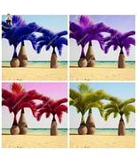 20 Pcs Japan Blue Bottle Palm plants Multi-Color Exotic Plants Tree Balc... - $8.37