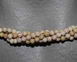 Img 2911 thumb155 crop