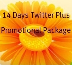 7 Items For 14 Days Twitter Plus Promotion Package - $11.99