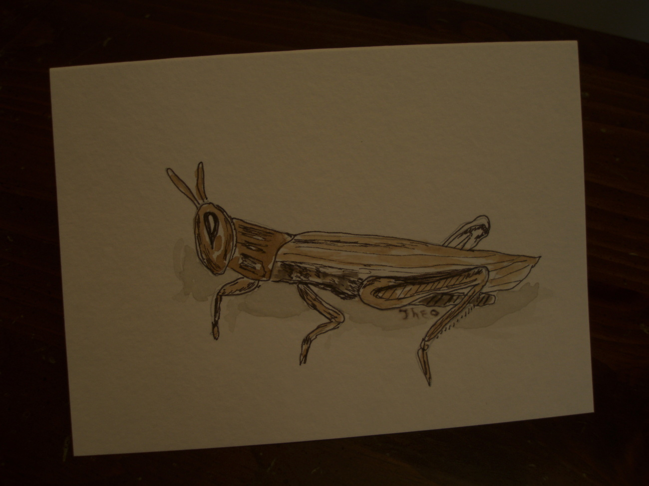 Primary image for Handpainted greeting Blank Card with grasshopper