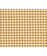 Cantaloupe 14ct Painted perforated paper PP18 9... - $5.40