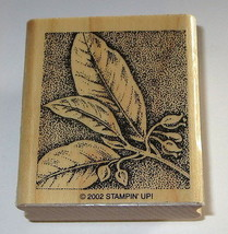 Leaves Branch Rubber Stamp Leaf Flower Buds Stampin' Up! Rare Retired Wood Mtd - $6.43