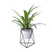 Large Modern Plants and Planters,7.09 inch Planter Pots Indoor Garden Wh... - $29.05